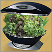 Aerogarden Kitchen Herb Garden