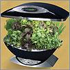 Aerogarden Kitchen Herb Garden